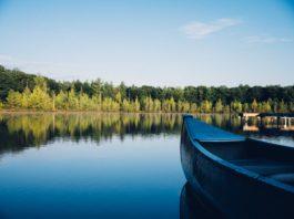 New Hogan Lake Fishing Facts