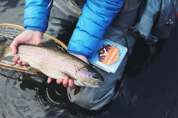 How to Hold a Trout