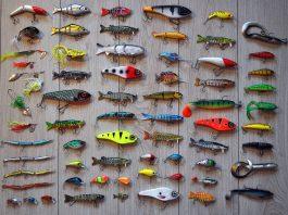 Essential Beginner Fisherman Gears
