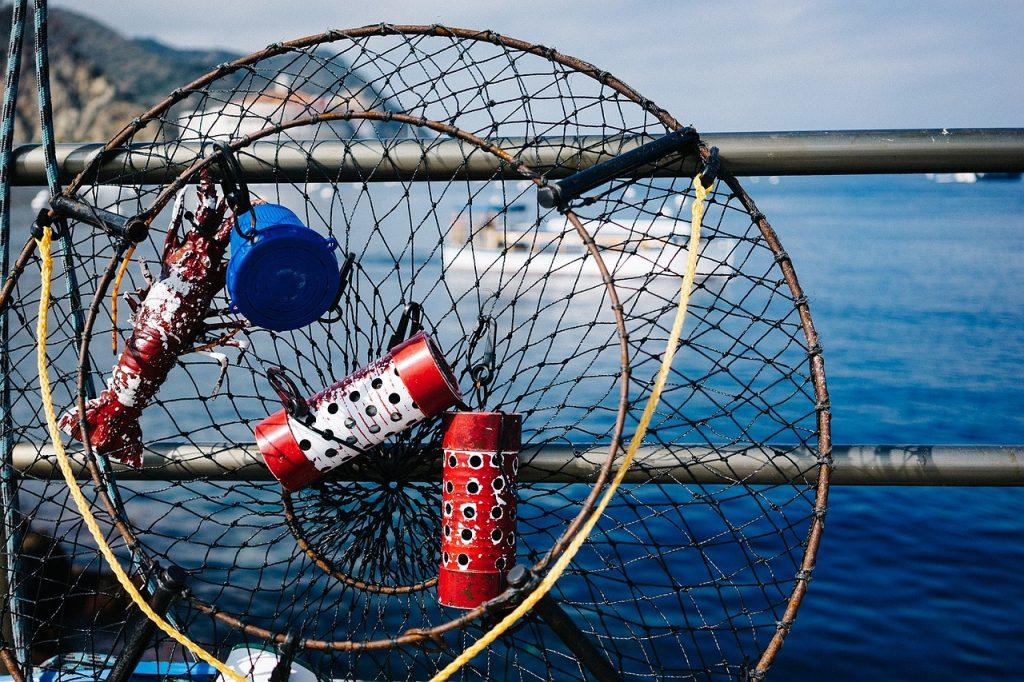 fishing equipment for beginners