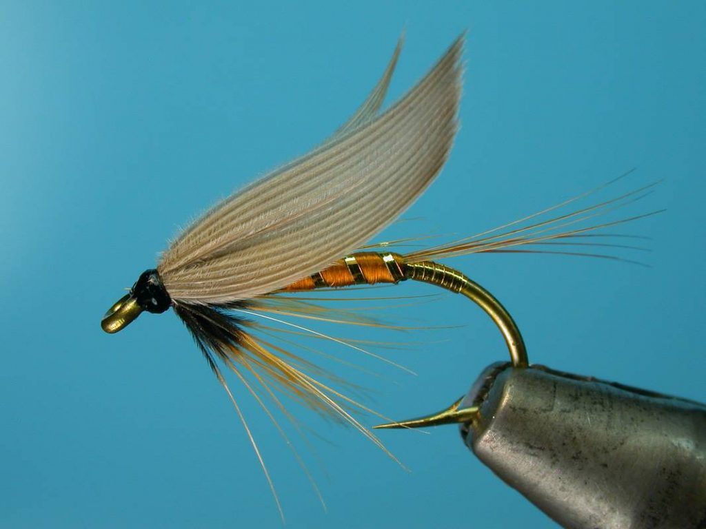 A Wet Fly Quick Guide