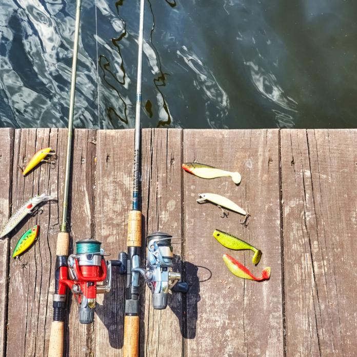 Best carp fishing rods