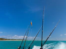 Best Sea Fishing Tips