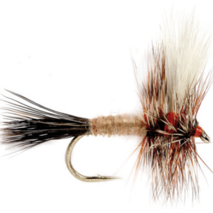 The Ausable Wulff Fly