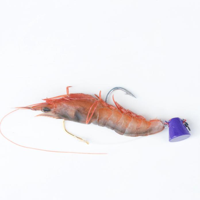 Shrimp bait for fishing