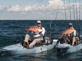 7 Beginner Tips for Kayak Fishing in Saltwater